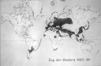 MAHD. Serie 15: Tifus, cólera y disentería. Diapositiva nº 29.
